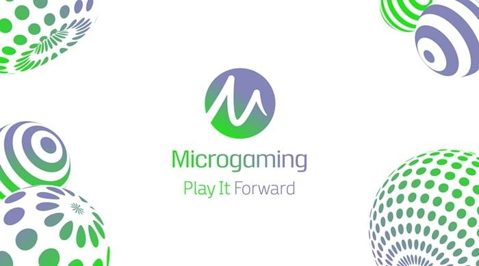 เกี่ยวกับ MicroGaming